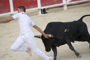 Bullfighting at Saintes-Maries-de-la-Mer