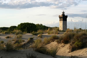 Lighthouse in the Camargue