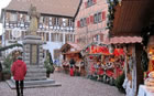 Living in Alsace