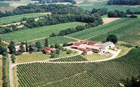 Winemaking in Gascony